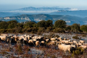 Montseny   Walking holidays in Spain