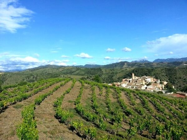 priorat walking tours and wines