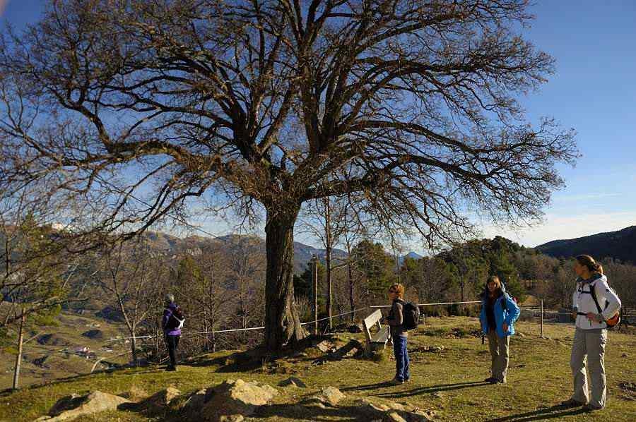 Sur les traces de Gaudí et Picasso dans les Pyrénées