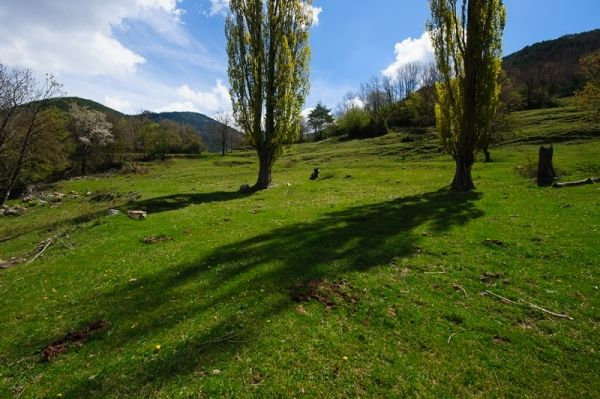 Bergueda | cadi moixero natural park