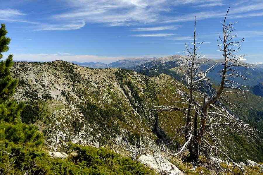 Trekking in the Cadi Moixero Natural Park   Hiking in Catalonia